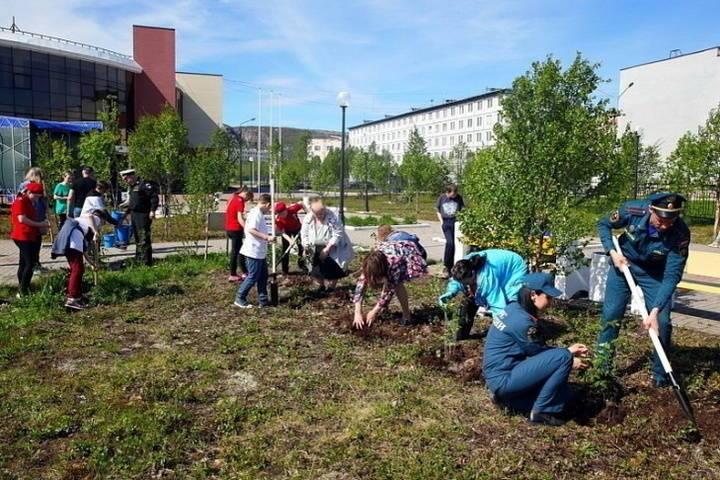 Жители Видяево присоединились к акции «Сад памяти» и высадили кусты сирени