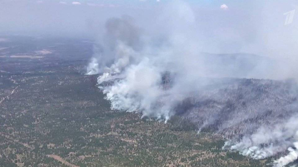 Лесные пожары не удается остановить в США
