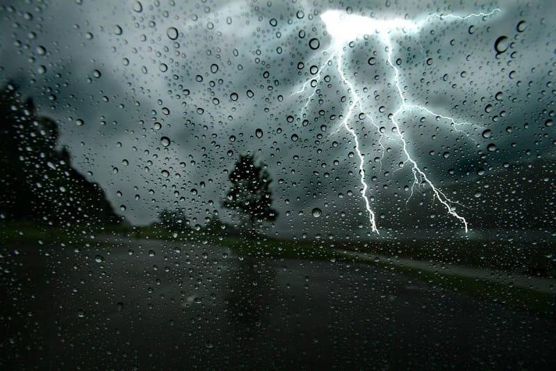 Дожди, грозы, сильный ветер. Прогноз погоды в Смоленской области на 12 августа