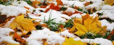 Синоптики Гидрометцентра прогнозируют похолодание в европейской части России