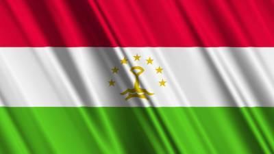 Наблюдатели от ШОС и СНГ признали выборы в Таджикистане свободными