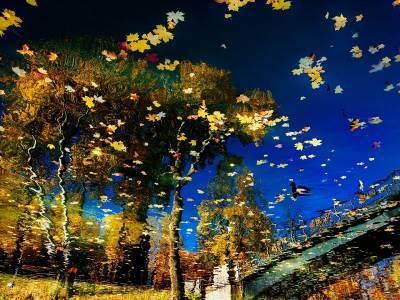 Последние дни «золотого октября». Синоптики рассказали о погоде во вторник