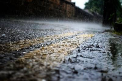 Хмурый и дождливый день прогнозируют псковские синоптики 14 октября