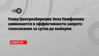 Глава Центризбиркома Элла Памфилова сомневается в эффективности запрета голосования за сутки до выборов
