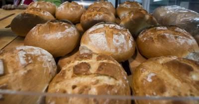Гастроэнтеролог назвала самый полезный хлеб
