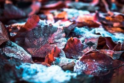 В Удмуртии ожидается прохладная погода и дожди со снегом