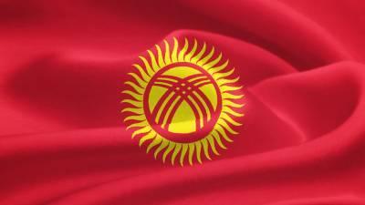 Наблюдатели от ПА ОДКБ признали выборы в парламент Киргизии состоявшимися