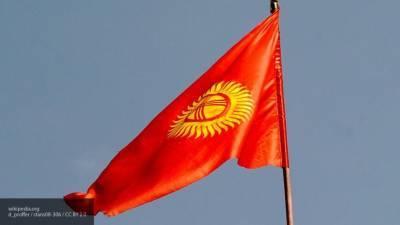 Наблюдатели МПА СНГ подвели итоги парламентских выборов в Киргизии