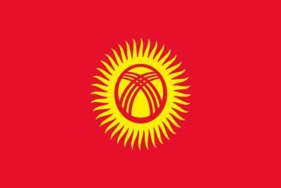 Наблюдатели СНГ одобрила парламентские выборы в Киргизии
