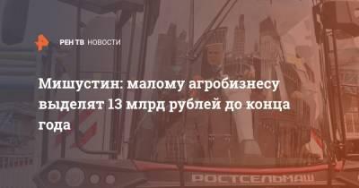 Мишустин: малому агробизнесу выделят 13 млрд рублей до конца года