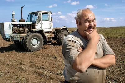 На гранты для малого агробизнеса в 2020 году выделят 13 млрд рублей