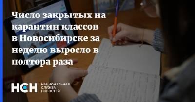 Число закрытых на карантин классов в Новосибирске за неделю выросло в полтора раза