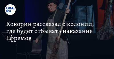 Кокорин рассказал о колонии, где будет отбывать наказание Ефремов. «Как в детском лагере»