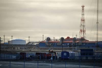 Минэнерго считает Ямал одной из потенциальных точек для развития нефтехимии