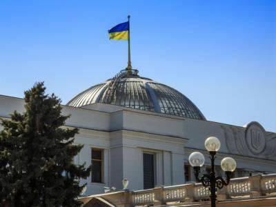 Главы фракций Верховной Рады в понедельник обсудят конституционный кризис и поддержку бизнеса – Железняк