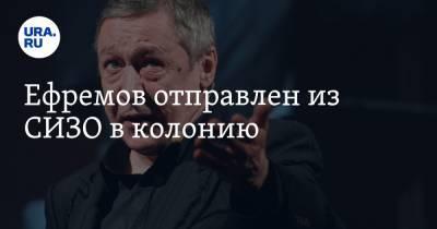 Ефремов отправлен из СИЗО в колонию