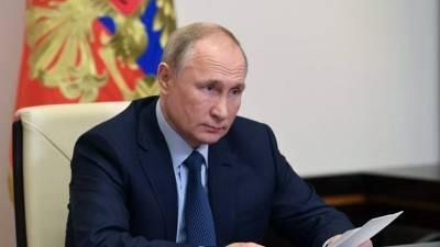 Путин отметил потенциал роста российской нефтехимии