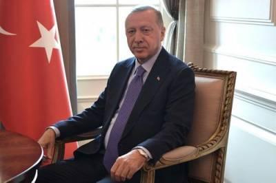 Эрдоган заявил, что президент Франции не научился политике