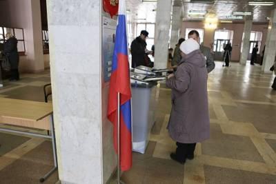 В Челябинске создан штаб наблюдателей на выборах. В него вошли уже 90 человек