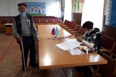 Единороссы и самовыдвиженцы лидируют на выборах депутатов в Себежском районе