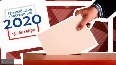 В Общественной палате разоблачили порядка 3 тыс. фейков о голосовании