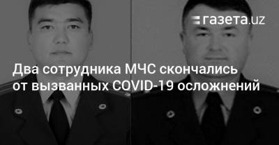 Два сотрудника МЧС скончались от вызванных коронавирусом осложнений