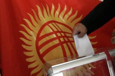 Наблюдатели от СНГ приступили к мониторингу выборов в Киргизии