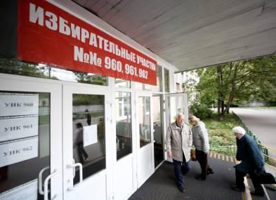 В Общественной палате рассказали о провокациях на выборах