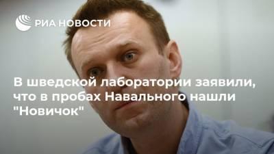 """В шведской лаборатории заявили, что в пробах Навального нашли """"Новичок"""""""