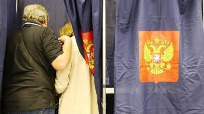 Иностранное вмешательство в российские выборы заметили в Госдуме