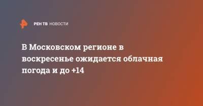 В Московском регионе в воскресенье ожидается облачная погода и до +14