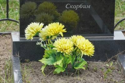 В Воронежской области за сутки от коронавируса умерли пять человек