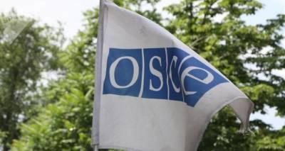 К выборам в Грузию приедут 350 наблюдателей ОБСЕ