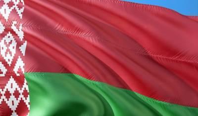 В Минске сторонники Лукашенко устроили автопробег