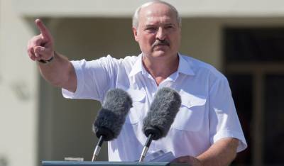 Все органы власти в Беларуси подконтрольны Лукашенко — оппозиционер