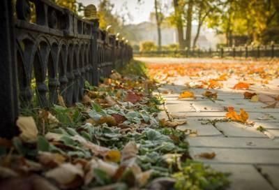 В Петербурге 30 сентября ожидаются облачная погода и до +17 °С