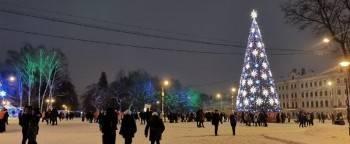 Мэр рассказал о наказании для хулиганов, снявших шары с главной новогодней елки