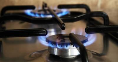 Зеленский о снижении цены газа для украинцев: Эти изменения - не шаг назад