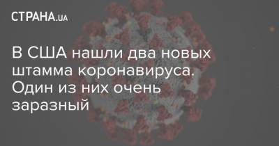 В США нашли два новых штамма коронавируса. Один из них очень заразный