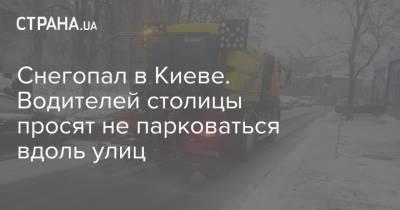 Снегопал в Киеве. Водителей столицы просят не парковаться вдоль улиц