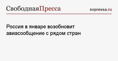 Россия в январе возобновит авиасообщение с четырьмя странами