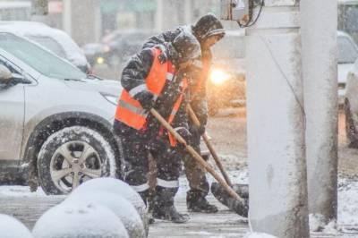 Россияне из-за снежной зимы стали чаще покупать лопаты и снегоочистители