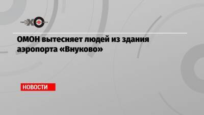 ОМОН вытесняет людей из здания аэропорта «Внуково»
