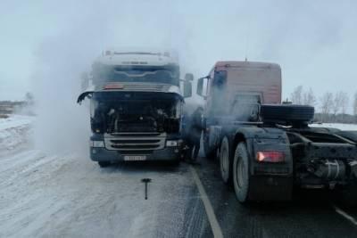 На омских трассах спасают замерзающих водителей