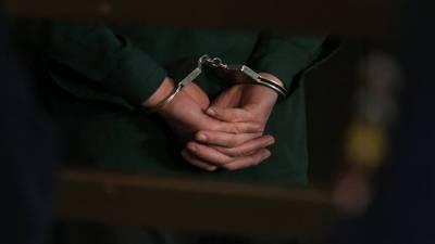 Задержаны трое похитивших младенца в Подольске
