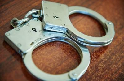 Троих жителей Пензенской области арестовали по делу о похищении младенца в Подольске