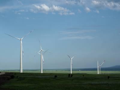 Экологичная синергия: «Ростелеком» подключил цифровые сервисы для самого мощного ветропарка России