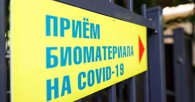 В Калининградской области коронавирус за сутки выявили в 20 муниципалитетах (список)
