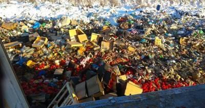 В Калининградской области уничтожили 20 тонн орехов, фруктов и овощей