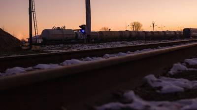 Камеры сняли момент, как электричка задавила разговаривавшего по телефону петербуржца